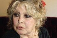 Brigitte-Bardot by etoiledevenus